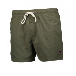 Bear Volley short